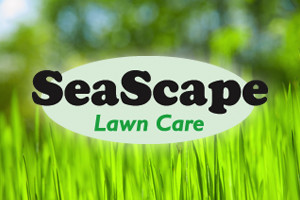 our service divisions - Lawncare